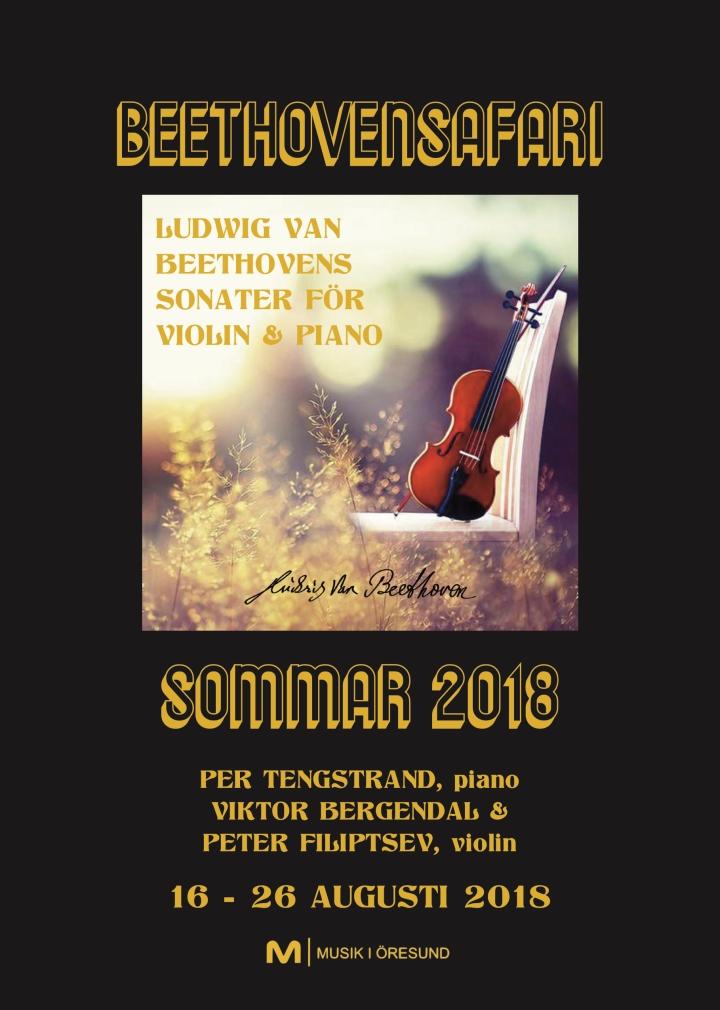 BeethovenSafariFolderSommar2018